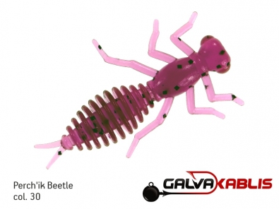 Perchik Beetle NEW col30